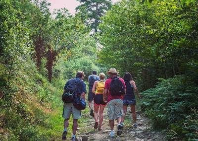 Tuscan Fitness Hiking Trail