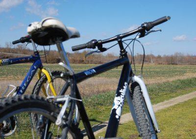 Tuscan Fitness - Biking