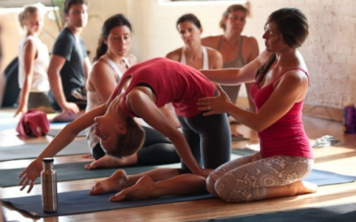 Want To Succeed As A Yoga Teacher? Read Now!