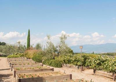 Tuscan Fitness Fontebussi Vegetable Garden