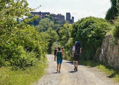 Tuscan Fitness Walking Tour Group