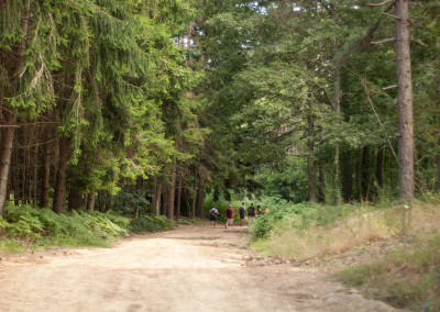 Tuscan Fitness Hiking Forest Trail