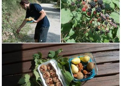 Tuscan Fitness Fruit and Snacks on Hike