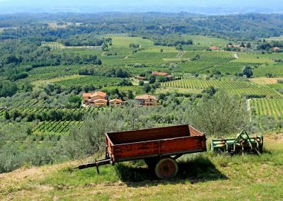Tuscan Fitness Countryside View