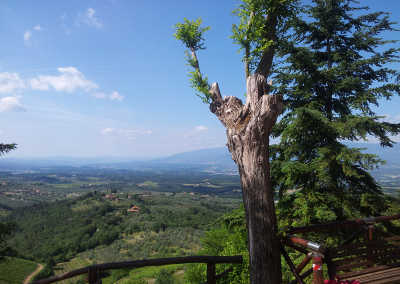 Tuscan-Fitness-View-From-Moncioni