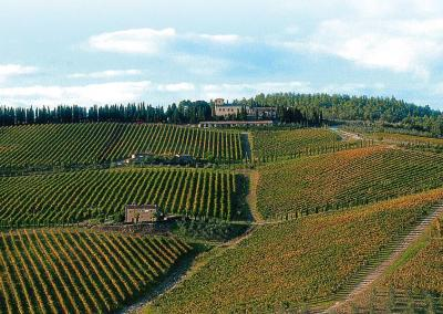 Tuscan Fitness View of Albola