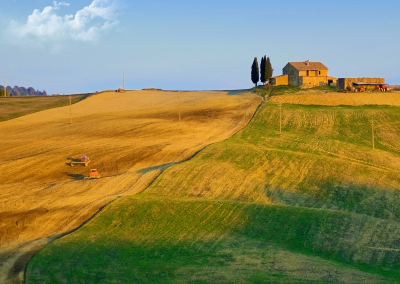 summer in tuscany wall ink_bluesky
